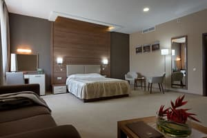 Спа-отель Ovis Hotel. Junior Suite 2